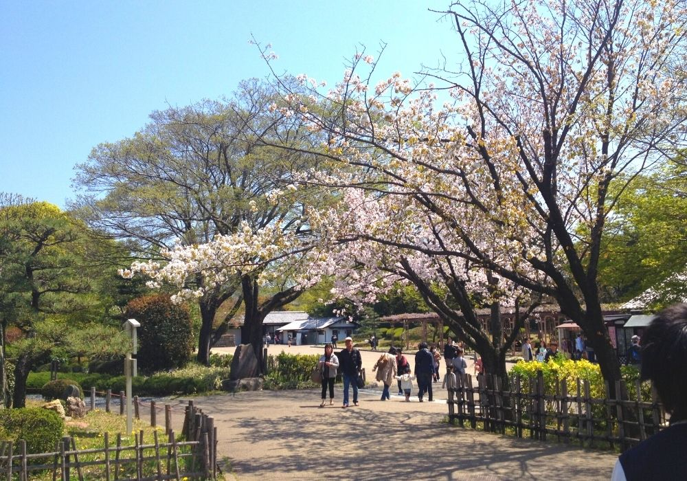 名古屋城庭園