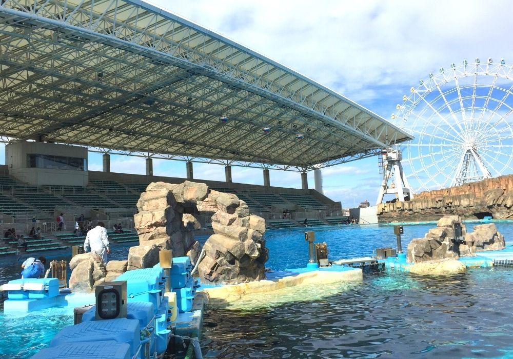 名古屋港水族館ショー